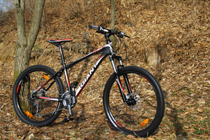 2013 GIANT TALON 2